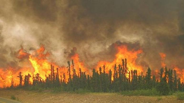 السيطرة على حريق نشب في 3 هكتارات أعشاب في محيط القطب التنكولوجي بمنوبة وتسبب في هذه الخسائر