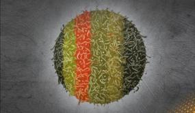 """""""رقاع""""… معرض افتراضي للتشكيلي السوري هادي قاصوص في """"كتارا"""""""