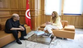 وزيرة الشؤون الثقافية تستقبل البشير بن سلامة وزير الثقافة سابقا