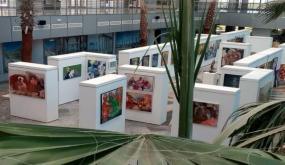 نقابة مهن الفنون التشكيلية تندد بآداء لجنة إقتناءات الدولة التونسية للأعمال الفنية وتدعو الى إلغاء كل ما ترتب على زيارتها الأخيرة