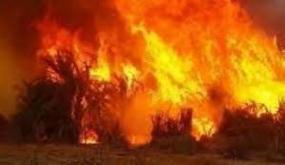 حريق هائل في المستودع الخارجي لأحد المصانع المختصة في الفريب بمنزل جميل