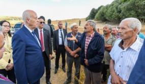 """قيس سعيّد: """"حريق جبل عمدون هو عمل إجرامي مقصود في حق الدولة التونسية"""""""