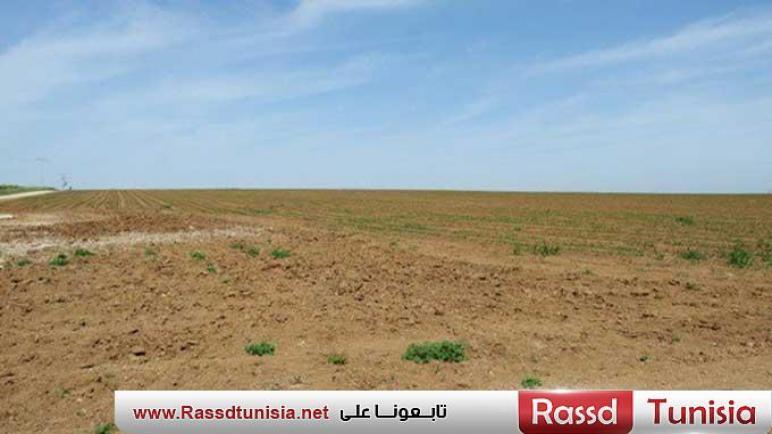 باجة : استرجاع عقار دولي فلاحي تقدّر مساحته بحوالي 25 هكتارا